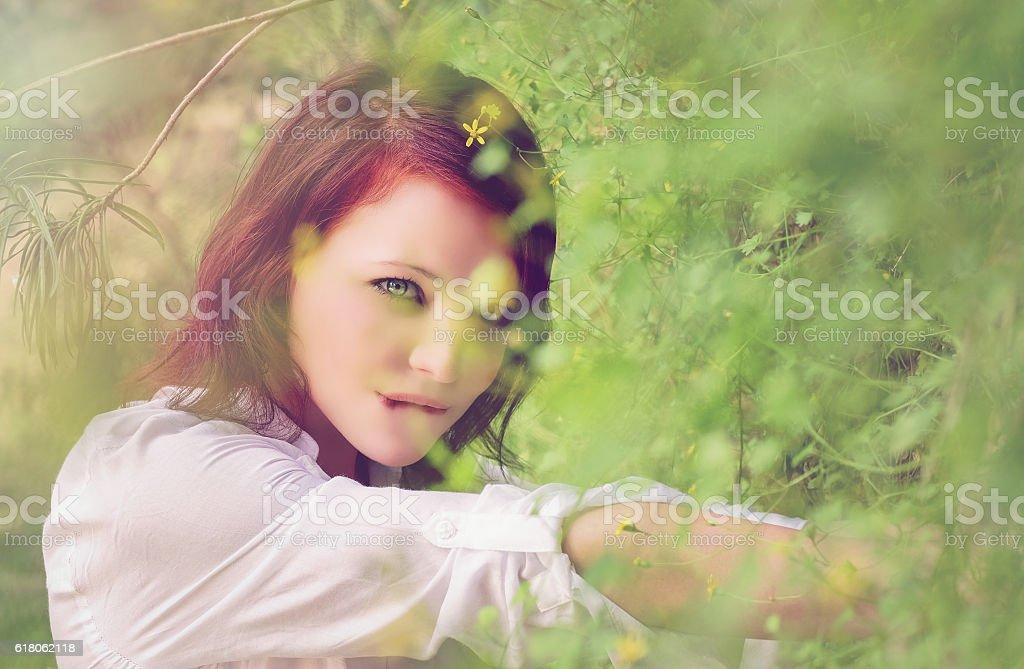Redhead behind the bush stock photo
