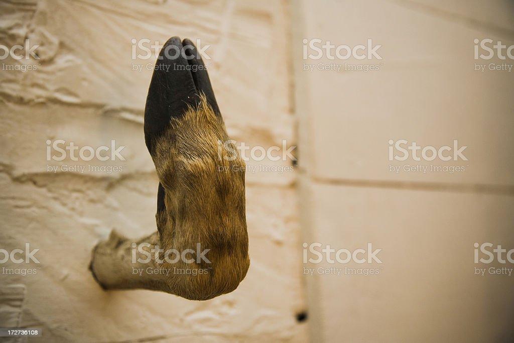 redneck hat hook stock photo