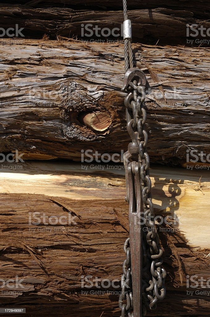 Redwood Logs On Logging Truck stock photo