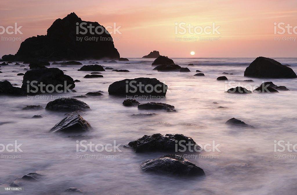 Redwood Sunset royalty-free stock photo