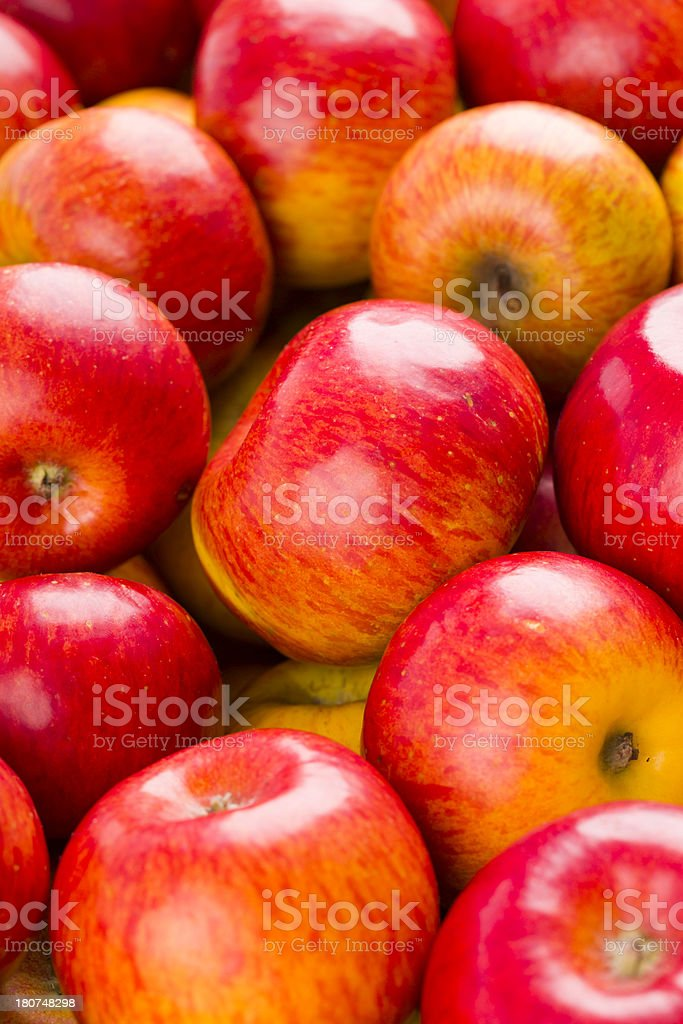 red-yellow apples royalty-free stock photo