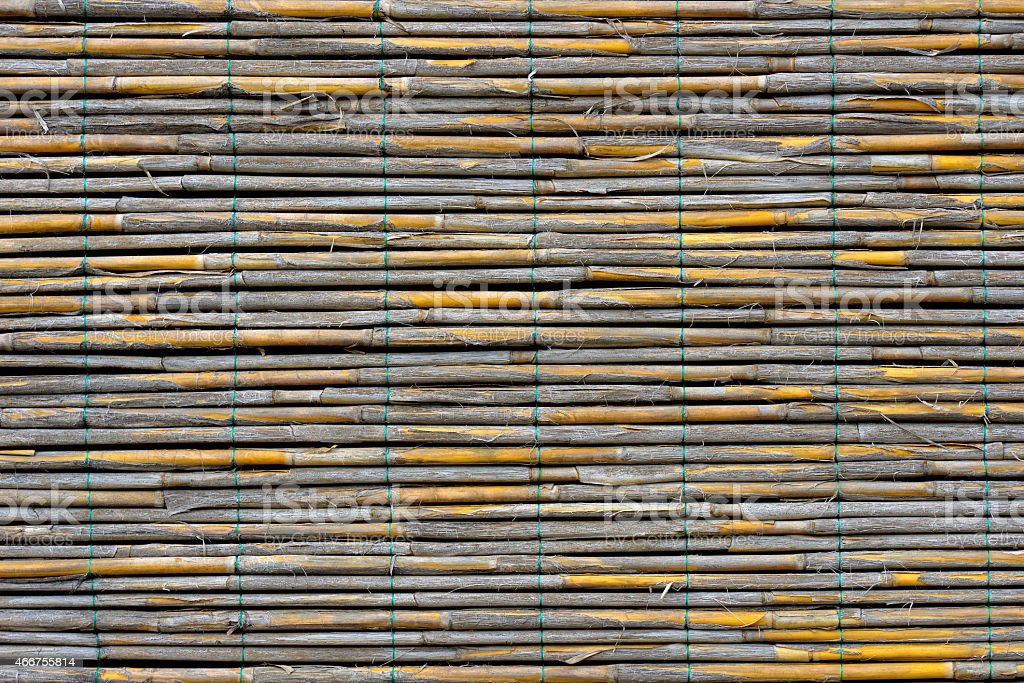 Reed panel stock photo