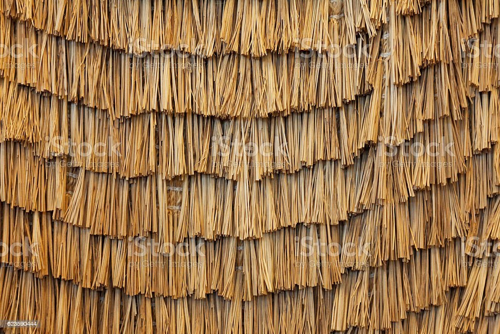 Reed thatch background stock photo
