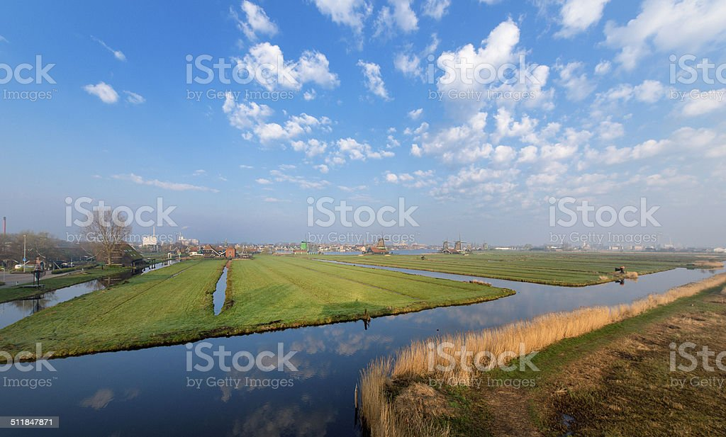 Reedlands  and meadows near Zaanse Schans, Holland early morning stock photo