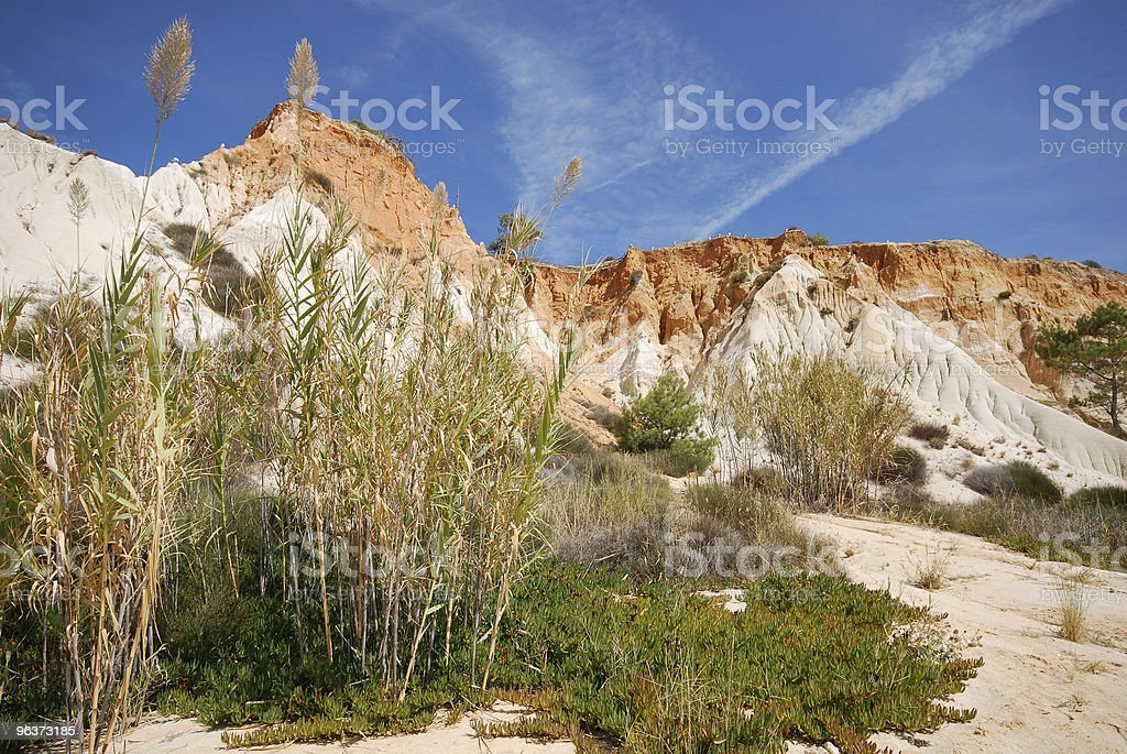 reed,red cliffs and blue sky (Algarve,Portugal) royalty-free stock photo