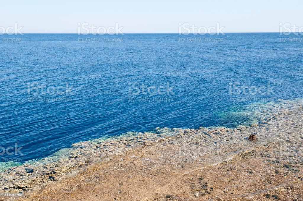 Reef in Dahab, Egypt stock photo