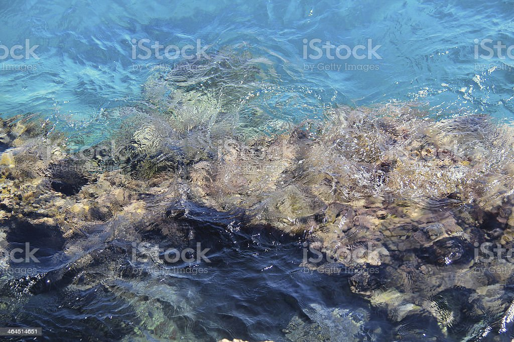 reef royalty-free stock photo