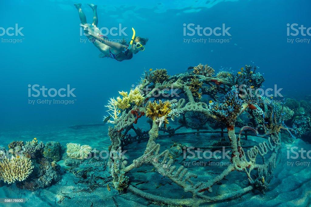 Reef stock photo