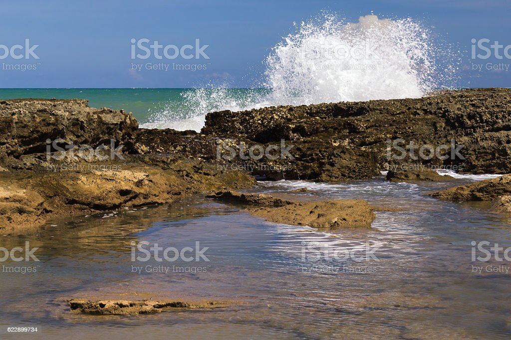 Reefs of Pontal do Coruripe Beach - Alagoas - Brazil stock photo