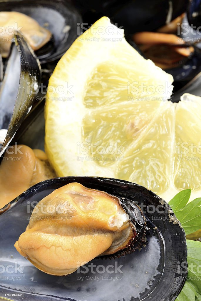 ref mussels with lemon royalty-free stock photo