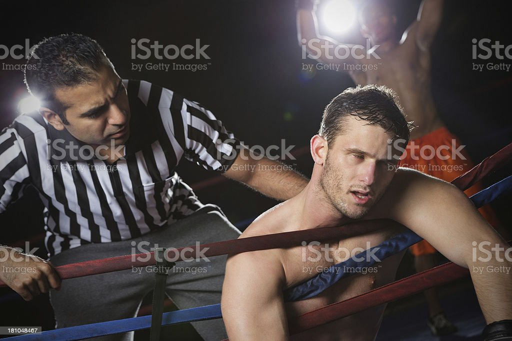Referee chcking on boxer after being knocked out in fight royalty-free stock photo