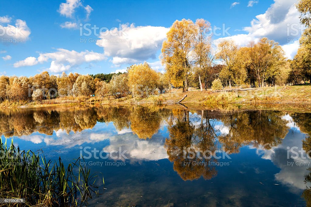 reflected in a forest lake autumn trees stock photo