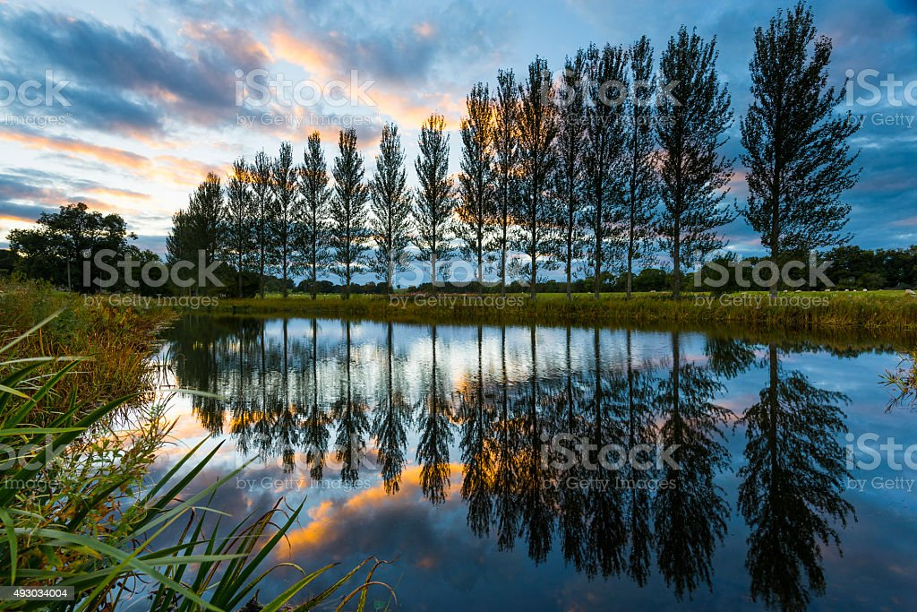 Reflected perspective royalty-free stock photo