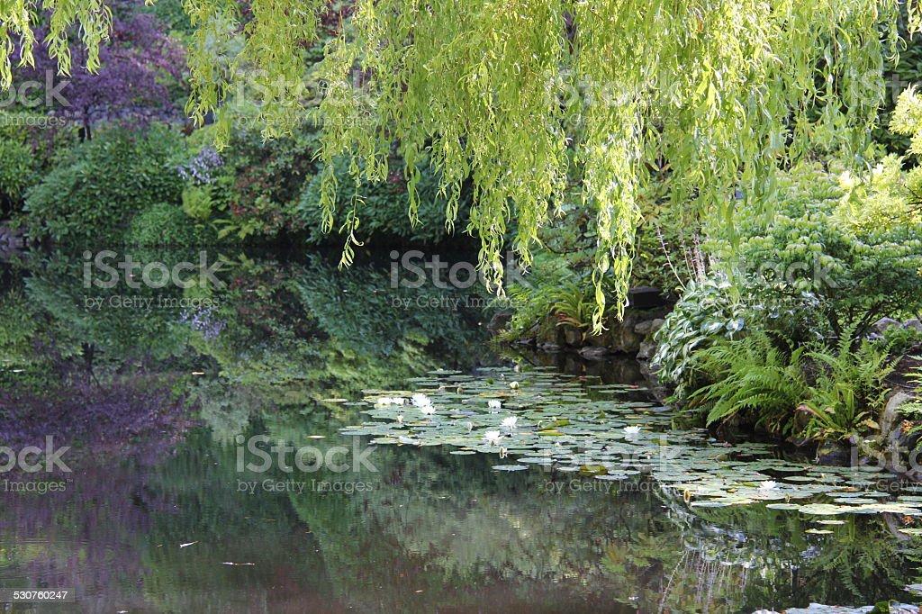 Reflecting Pool stock photo