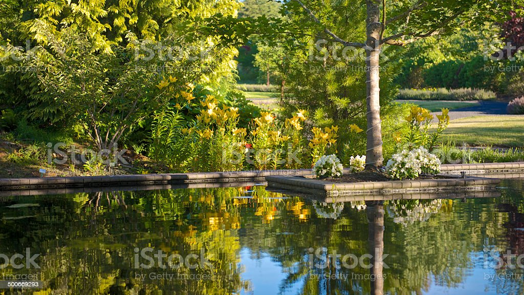Reflecting Pool with Trees Flowers at The Oregon Garden royalty-free stock photo