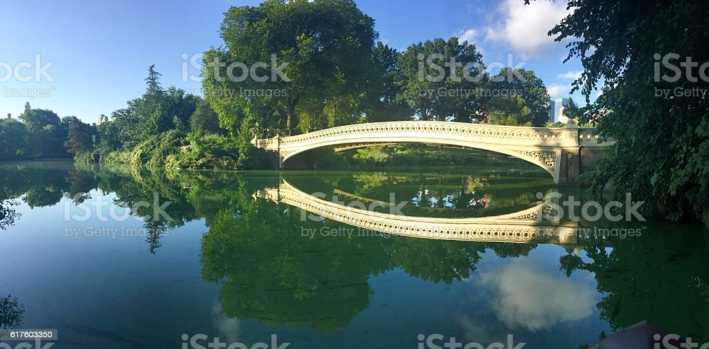 Reflection at Central Park, New York stock photo