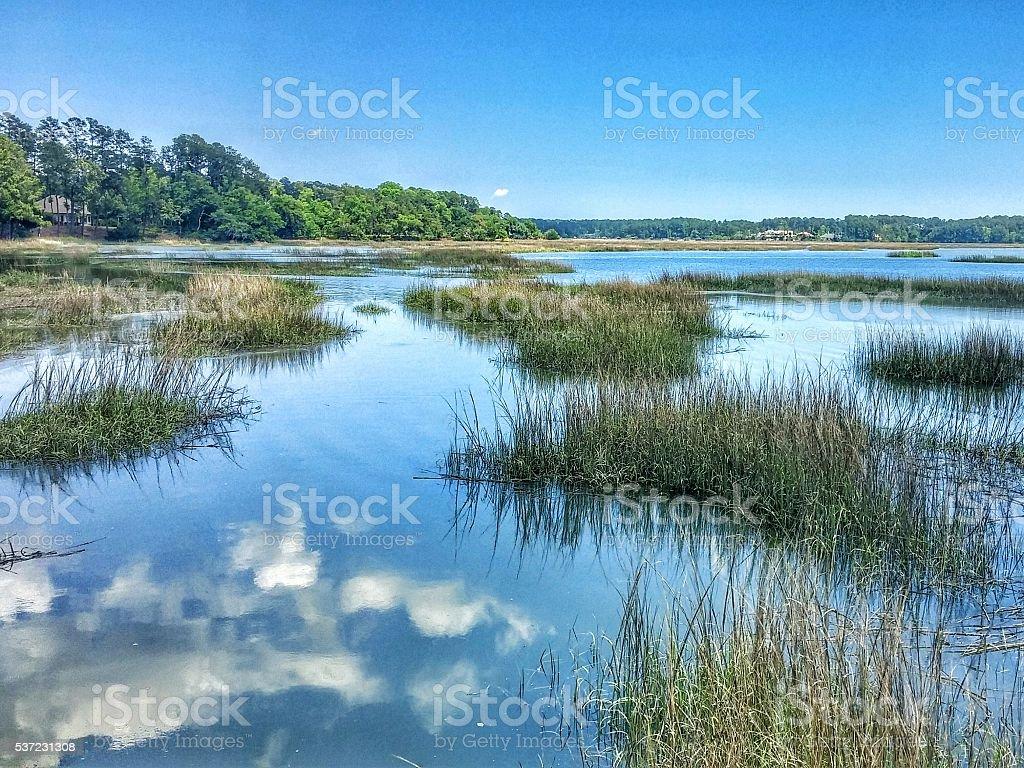Reflection, Clouds, Blue Sky, Brackish Briny Water, South Carolina stock photo