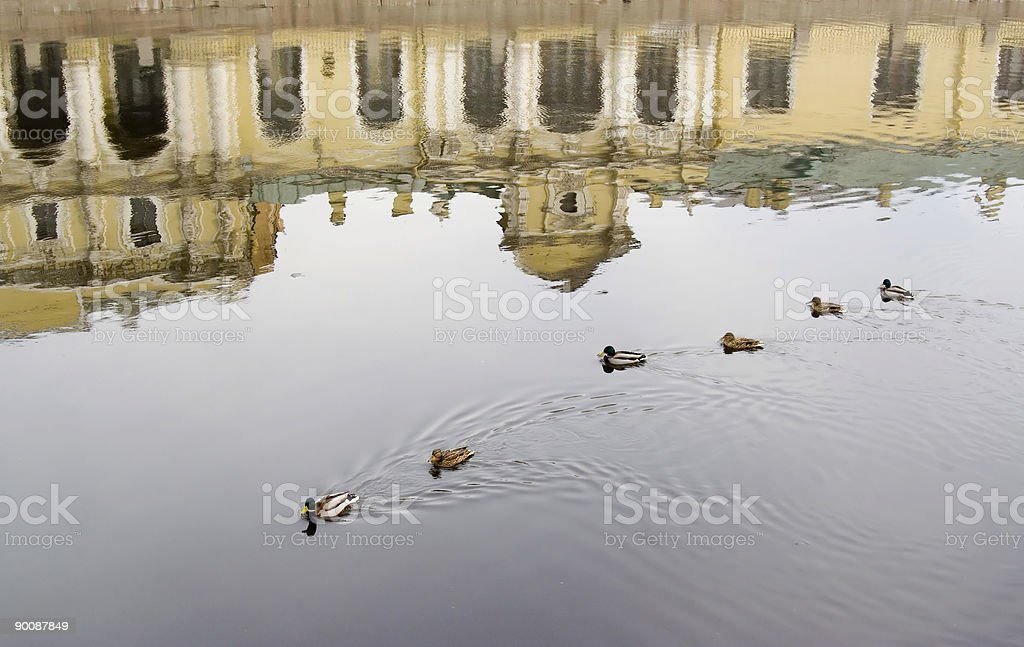 reflection in canal royalty-free stock photo