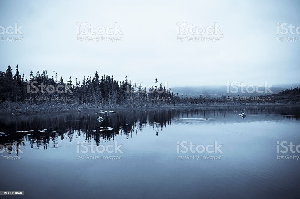 Reflection in lake on gloomy day stock photo