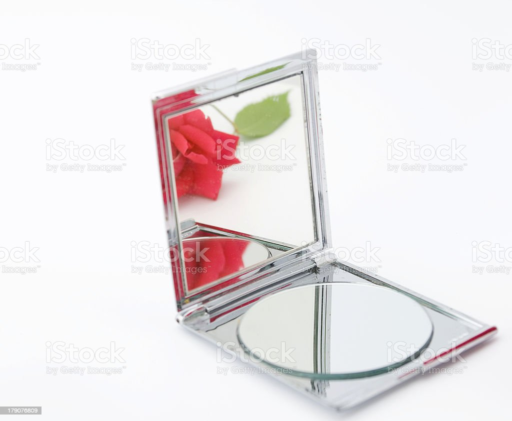 Reflection of a rose royalty-free stock photo