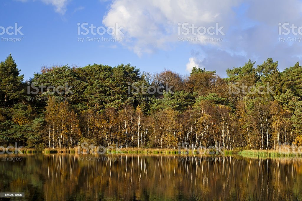 reflection of autumn forest in lake royalty-free stock photo