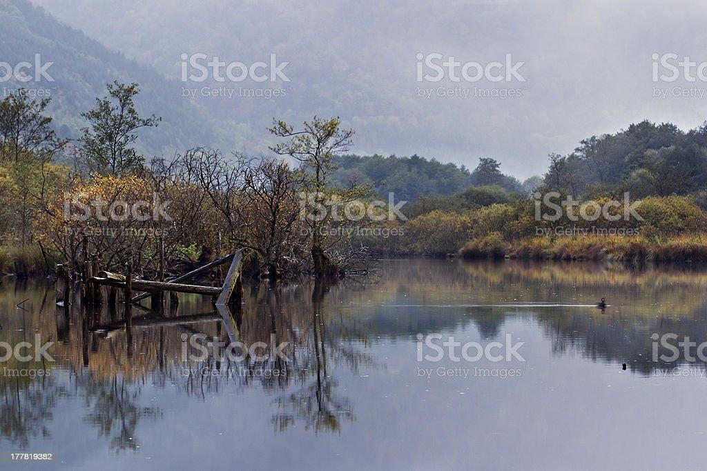 Reflection of autumn vegetation on a lake, low mountain range stock photo