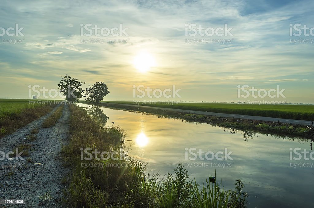 Reflection of morning sun royalty-free stock photo