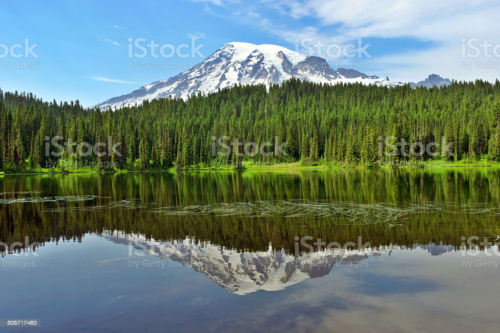 Reflection of Mt.Rainier stock photo