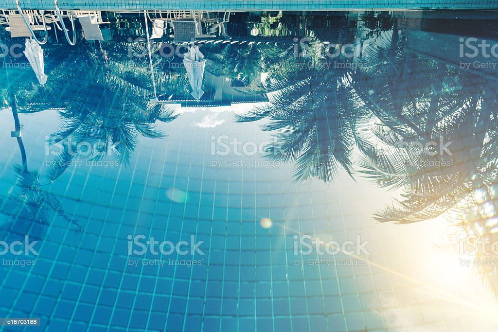 reflection of sun and palm trees in blue swimming pool stock photo