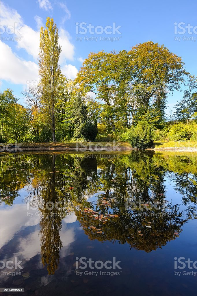 Reflection of trees in autumn pond stock photo