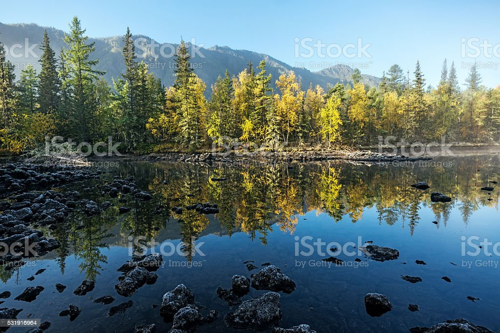 Reflection of trees in the river Zhombolok stock photo