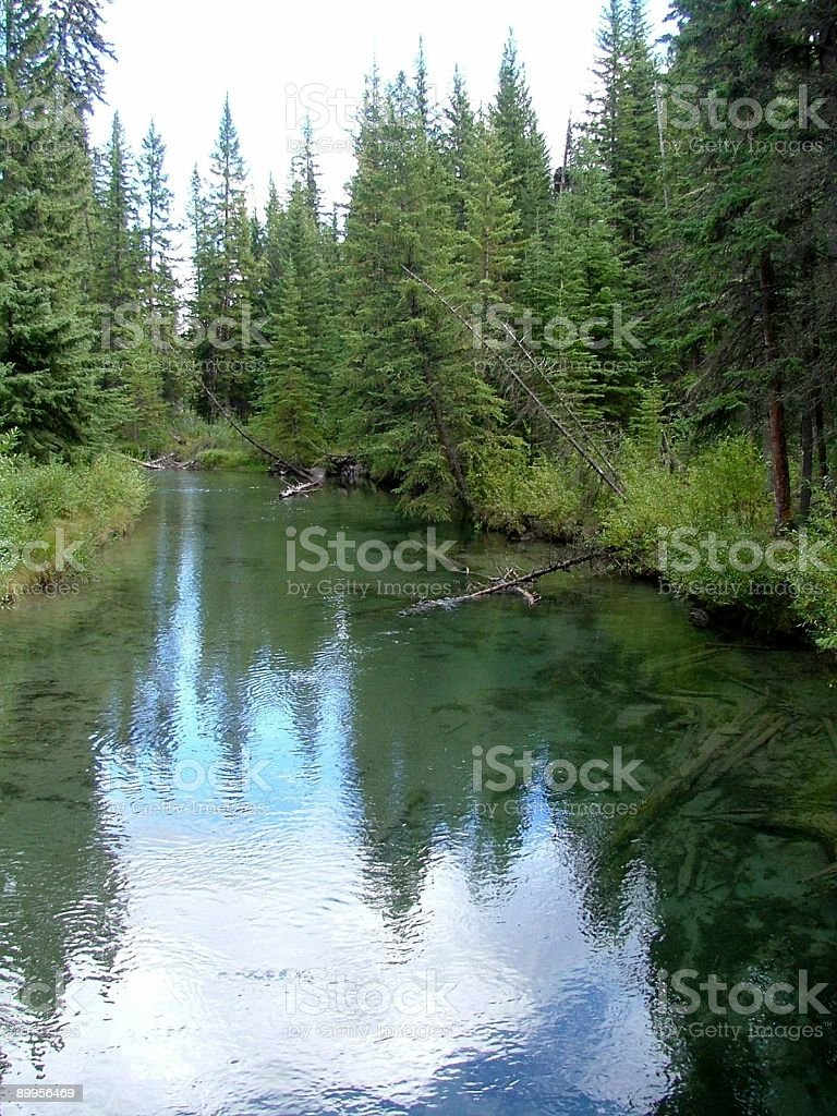 Reflection on a Mountain Stream royalty-free stock photo
