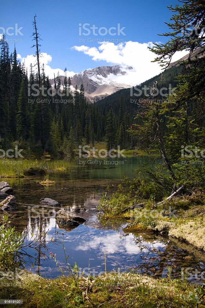 Reflection on Mountain Pond royalty-free stock photo