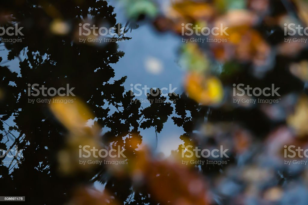Reflections and layers of reality stock photo