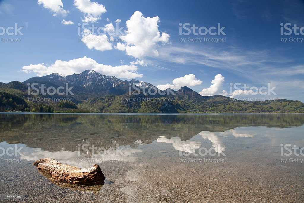 Reflections in the lake royalty-free stock photo