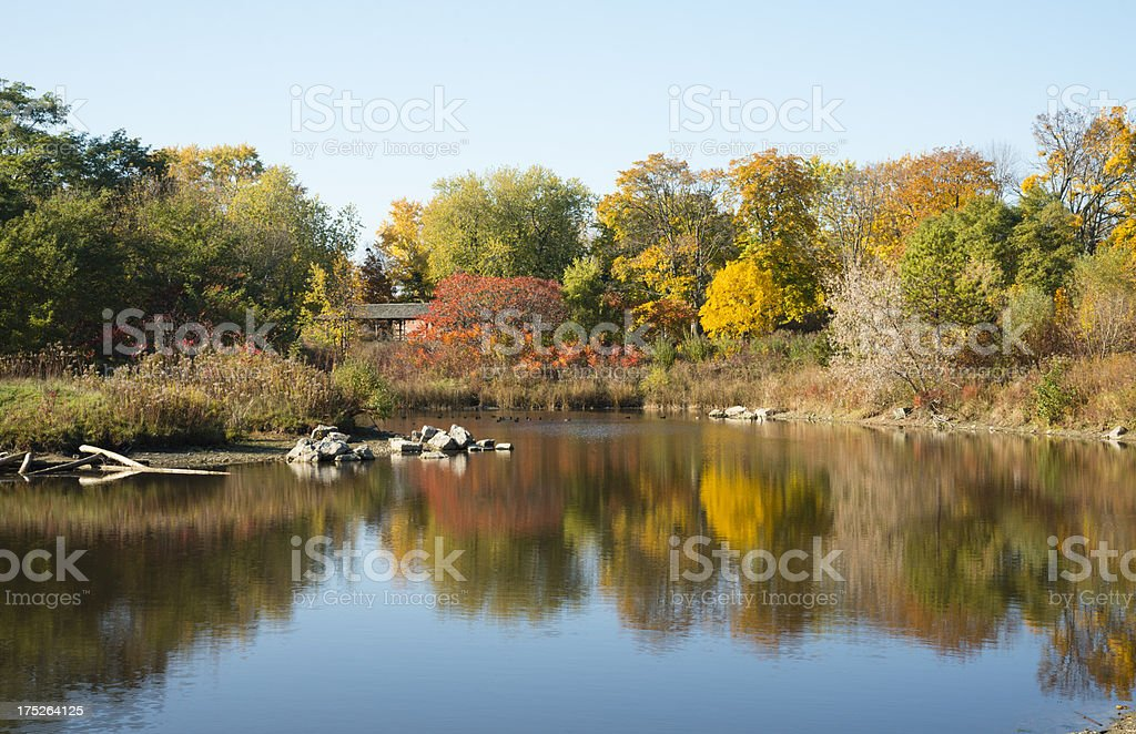 Reflections of Autumn on the Pond royalty-free stock photo