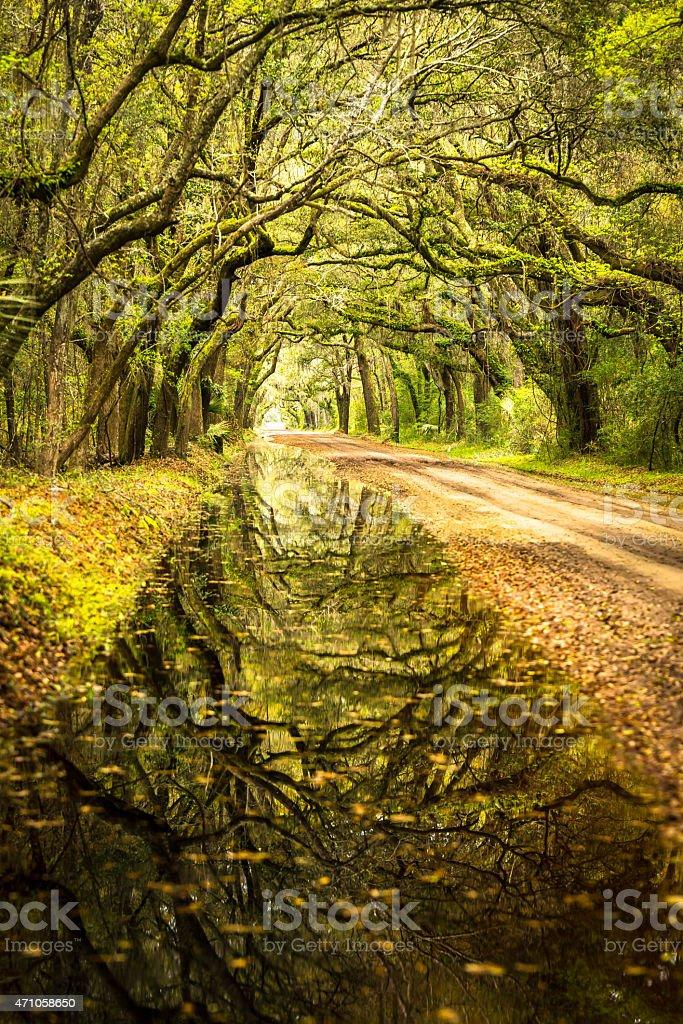 Reflections of Botany Bay stock photo