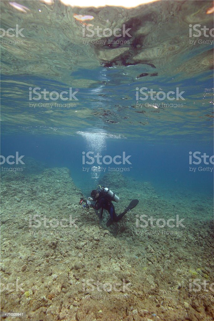 Reflections of Diver Photographer royalty-free stock photo