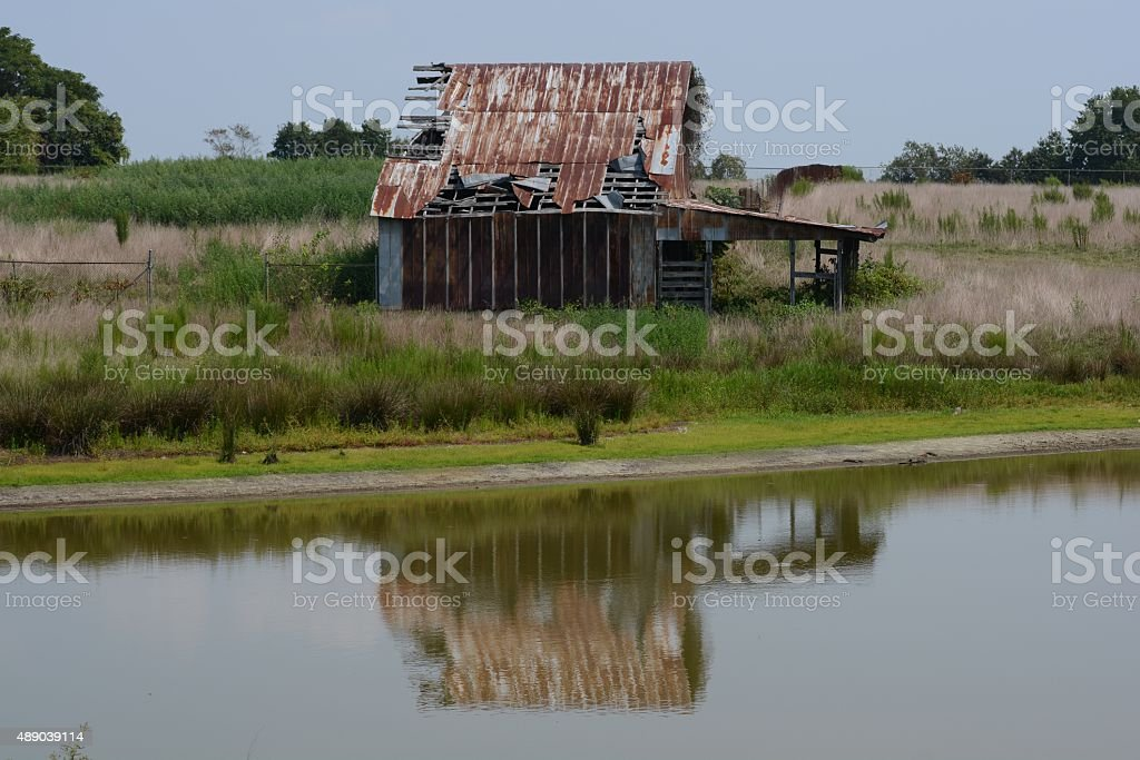 Reflections of Rural Life stock photo