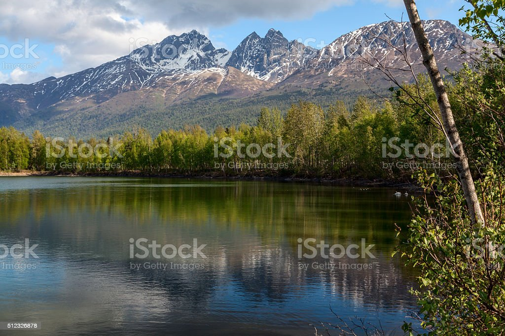 Reflections of Spring royalty-free stock photo