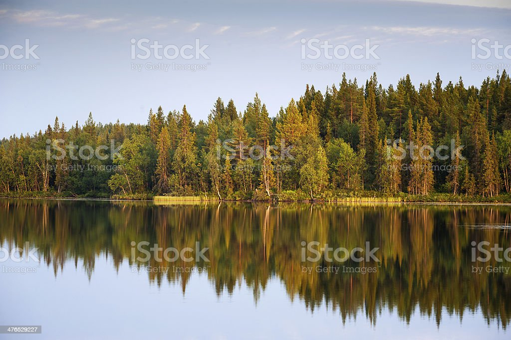 Reflections on a Wilderness Lake royalty-free stock photo