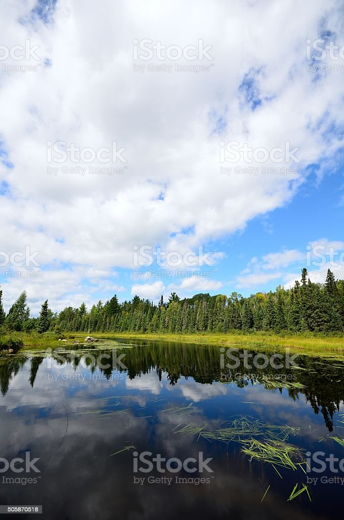 Reflections on a Wilderness River stock photo