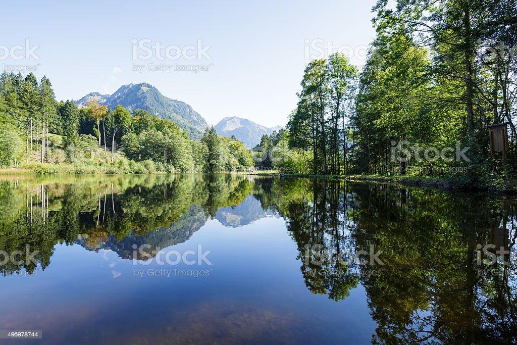 Reflections on Moorweiher stock photo