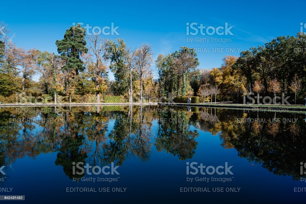 Reflections on the pond in Park stock photo