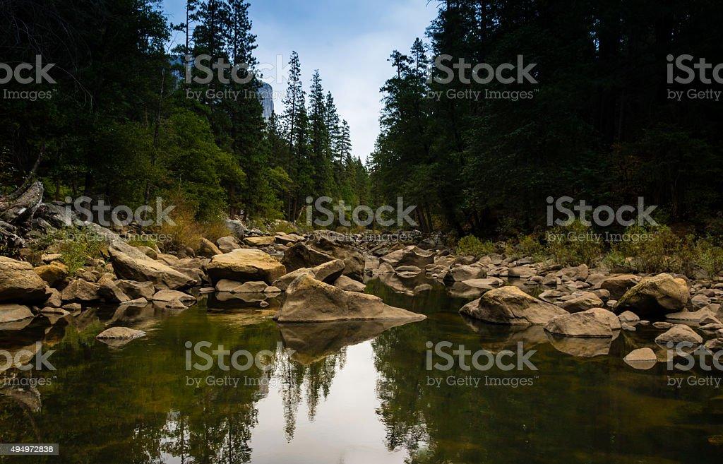 Reflective Forest Lake stock photo