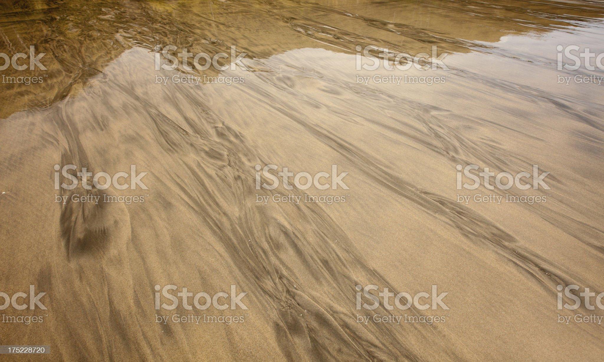Reflective wet sand on West Coast beach, Nelson, New Zealand royalty-free stock photo