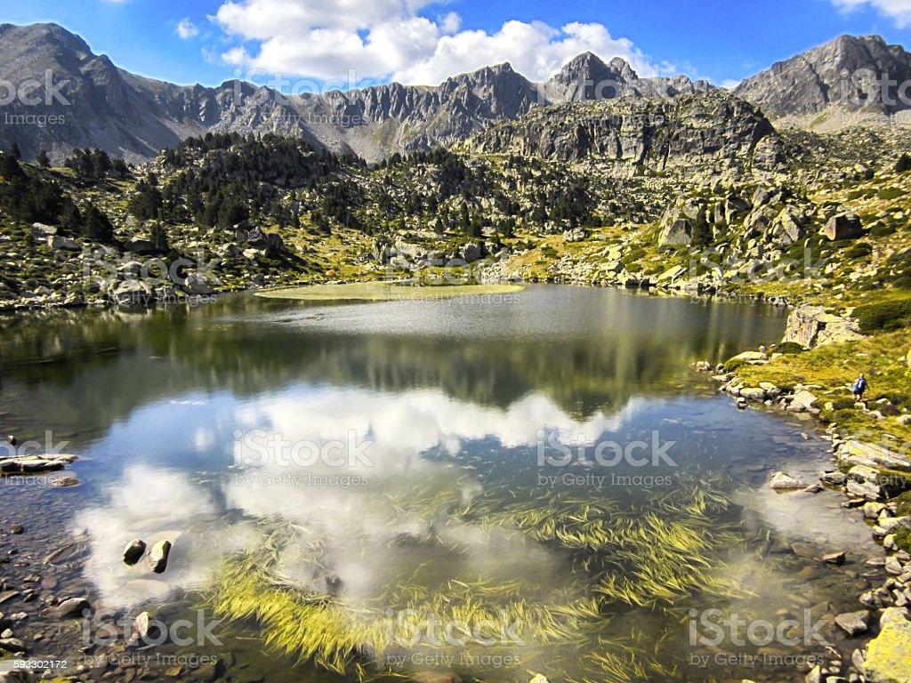 Reflejos lago stock photo