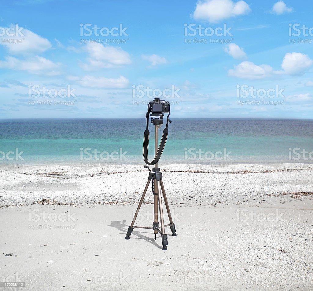 reflex on the beach royalty-free stock photo