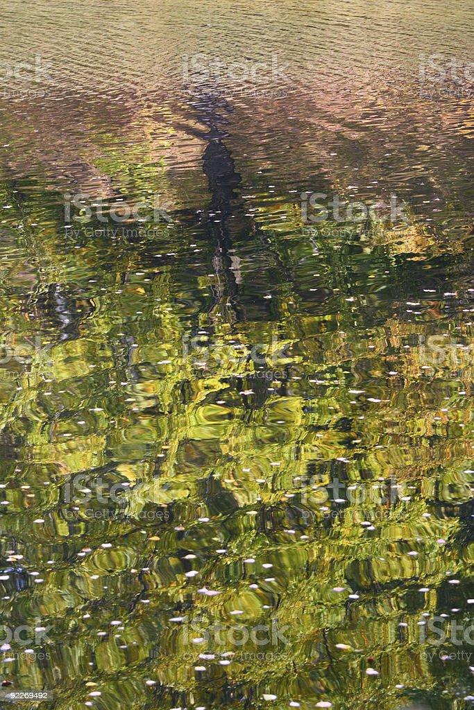 Reflexion jesieni zbiór zdjęć royalty-free