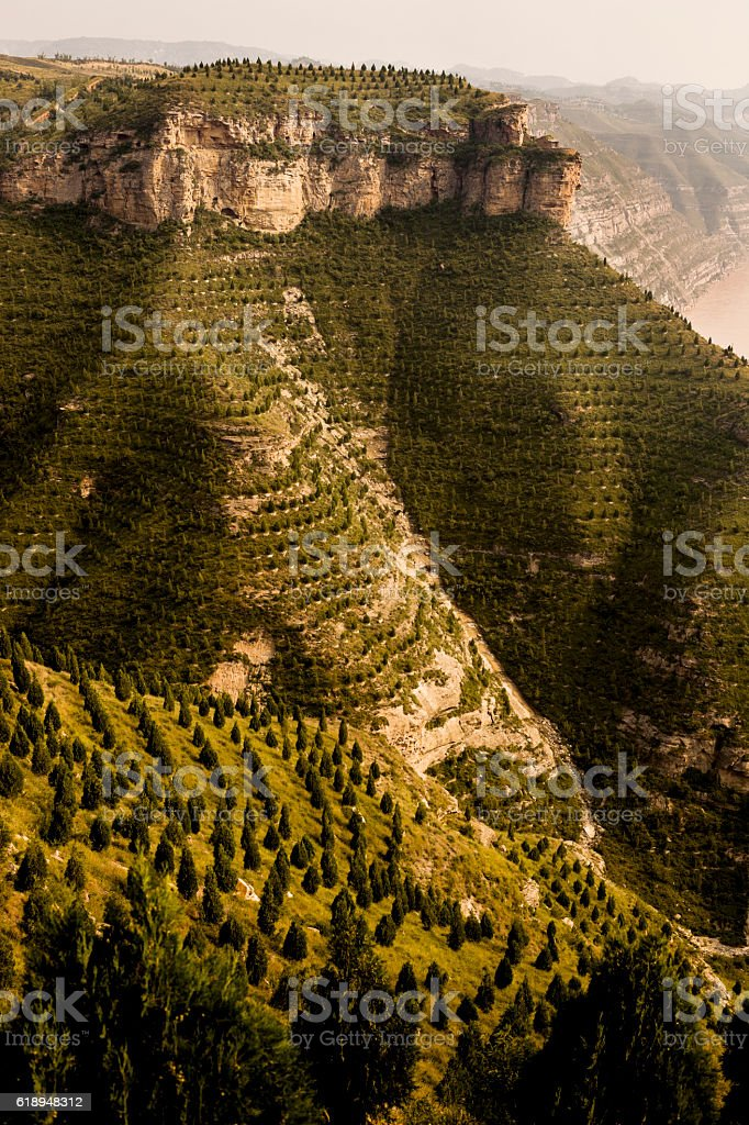 Reforestation of mountain side in Shanxi Province China stock photo